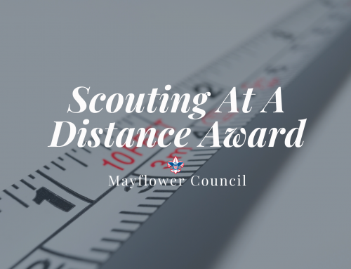 Scouting At A Distance Award