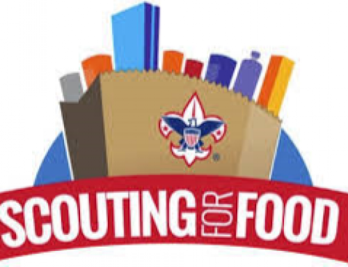 2020 Scouting For Food Collection Reporting