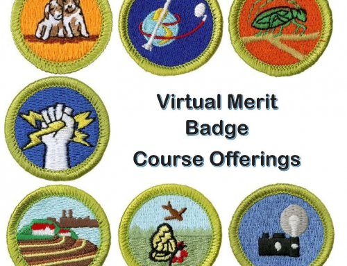 Virtual Merit Badge Offerings – August