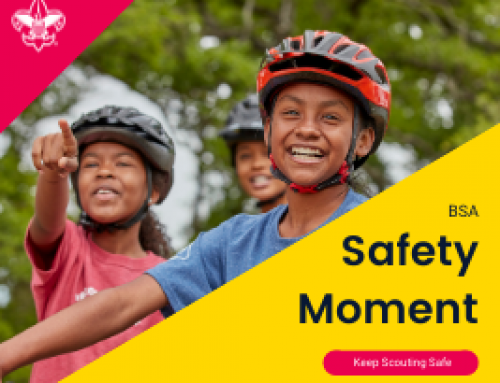 Scouting Safely Online Resources